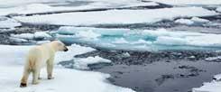 Die Eisschmelze wird weitergehen: Die Regierungschefs der EU-Staaten können sich bei ihrem Gipfel nicht auf CO2-Grenzwerte einigen, die den Klimawandel bremsen würden (Foto: thinkstock/gettyimages/pum_eva)
