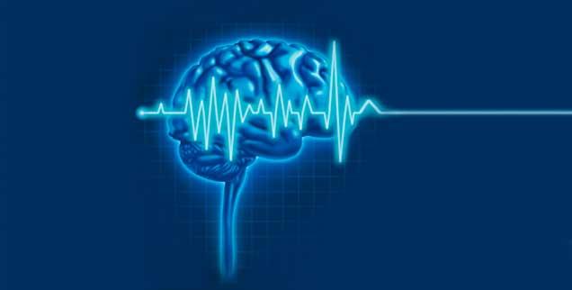 Ist der Mensch mit dem Hirntod wirklich tot? Ist er es nicht, gerät die Organspende-Praxis ins Wanken. (Foto: freshidea/Fotolia)