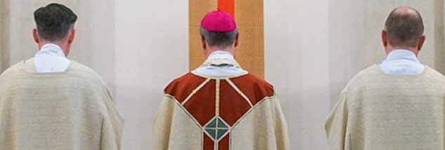 Mittlerweile ein seltenes Bild: Katholische Priesterweihe im Hamburger Dom (Foto: KNA)