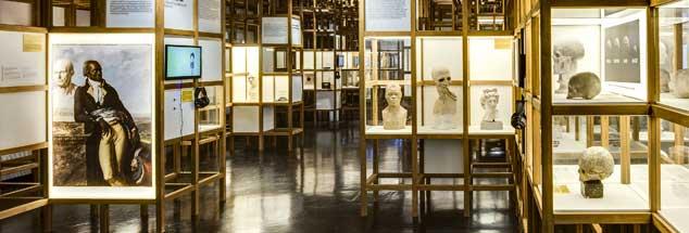 Ein Blick in die Ausstellung »Rassismus. Die Erfindung von Menschenrassen« im Deutschen Hygienemuseum (Foto: © David-Brandt.de/DHMD)