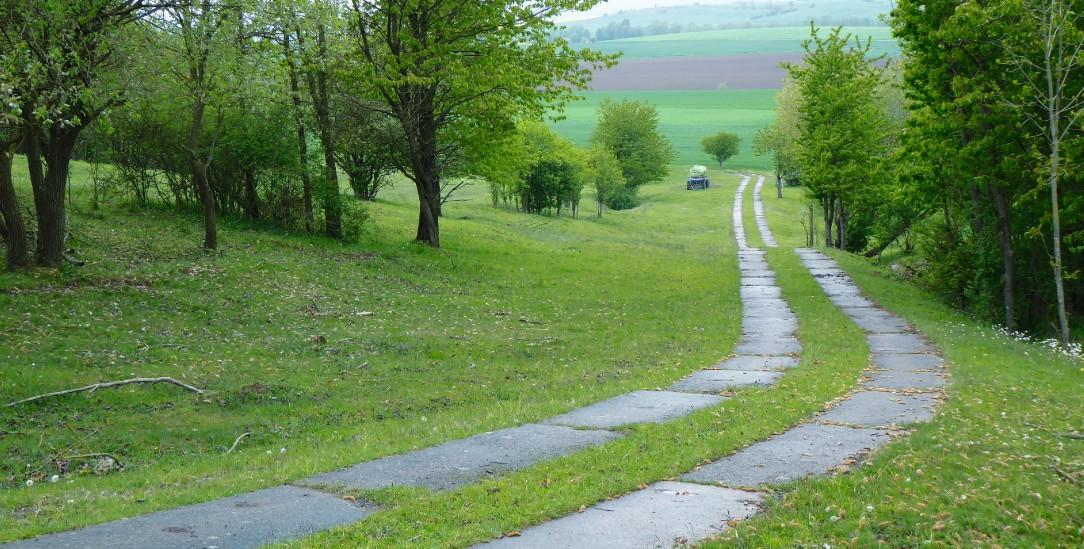Über den Beton in die Freiheit: Kolonnenweg an der ehemaligen deutsch-deutschen Grenze. (Foto: Magirius)