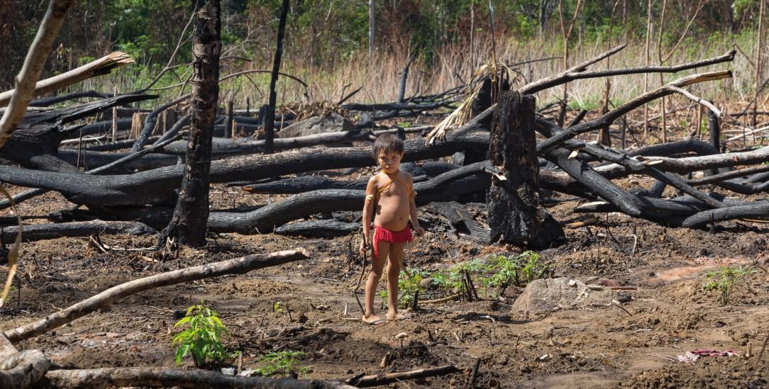 Für Indigene bleibt kein Platz mehr: Brandrodung in der Nähe eines Yanonami Dorfes (Foto: Jürgen Escher/© Adveniat)