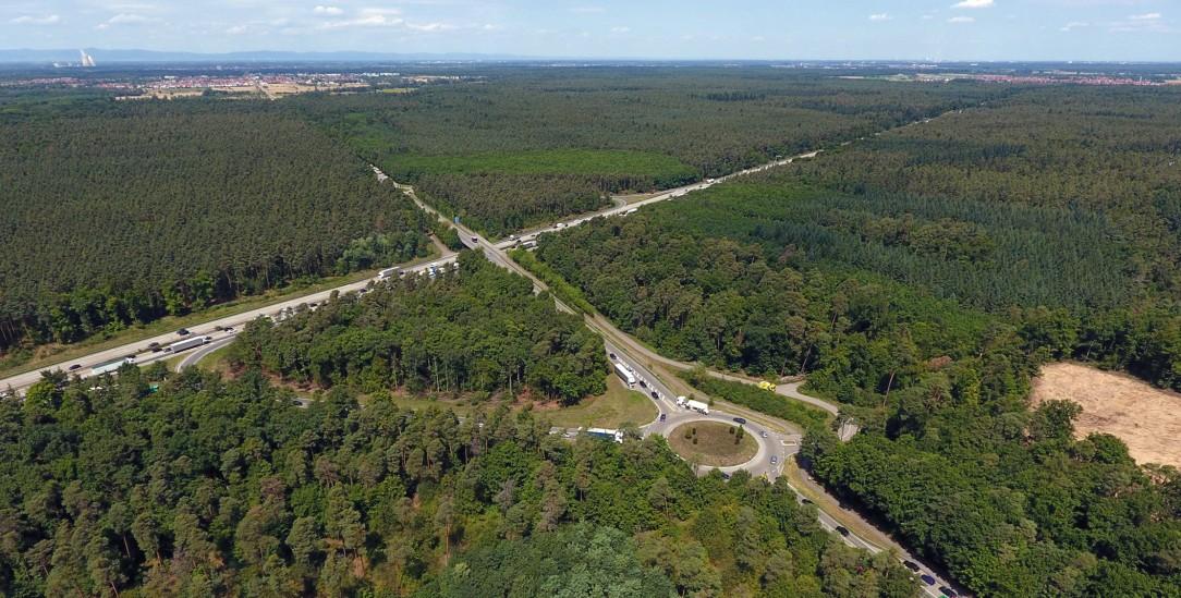 Windpark im Wald: Entlang der Autobahn A5 in Höhe von Kronau sollen zehn Windräder gebaut werden (Foto: PA/DPA/Rene Priebe)