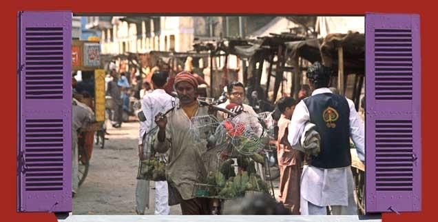 Ein Vogelhändler geht mit seinen Käfigen durch das Gewühle einer Straße in Karachi.(Foto: Jonathan Stutz/Fotolia.com, mod.; pa/Mummendey)