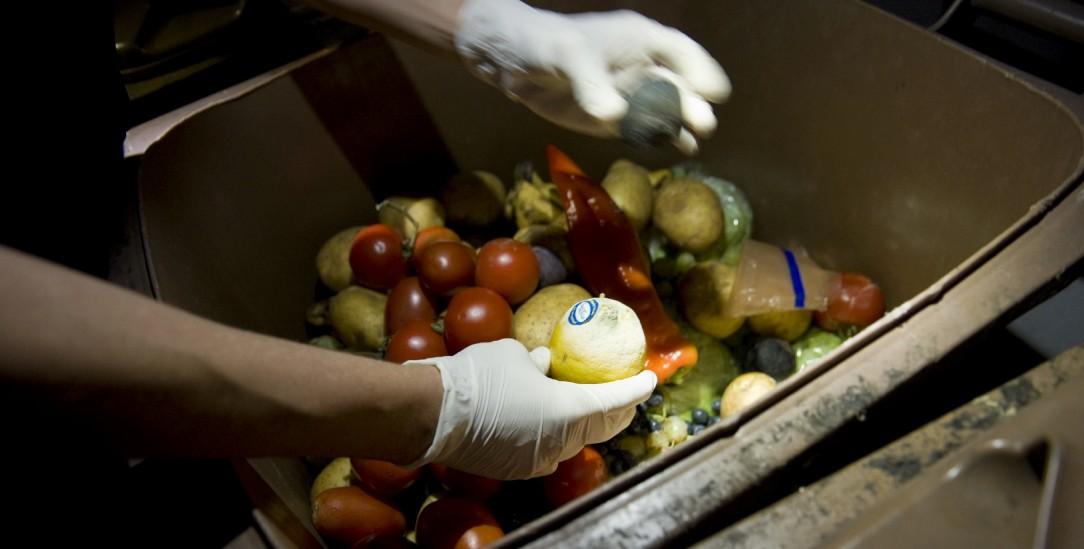Noch gut? Vieles, was in Supermärkten weggeworfen wird, kann noch verzehrt werden. Doch Zitronen oder Tomaten aus deren Mülltonnen zu nehmen, gilt als Diebstahl (Foto: pa/Prohaska)