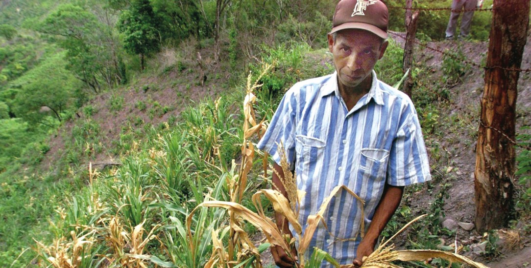 Verheerende Dürre: Die Bauern in El Salvador bekommen die Folgen des Klimawandels zu spüren (Foto: PA/DPA/AFP/Alvarez)