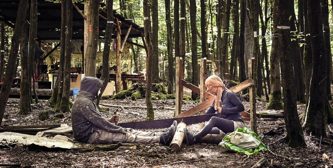 Sägen für den Forst (Foto: Teichmann)