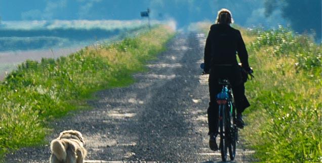 Viel erlebt, sich selbst verändert: Unsere Radler fahren mit Hundebegleitung auf einem Schotterweg durch kroatisches Sumpfgebiet (Foto: Borgans)