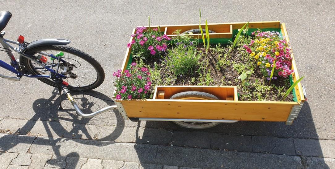 Mit seinem bepflanzten Fahrradanhänger provoziert Christoph Kleeberg  (Foto: twitter #beetmobil)