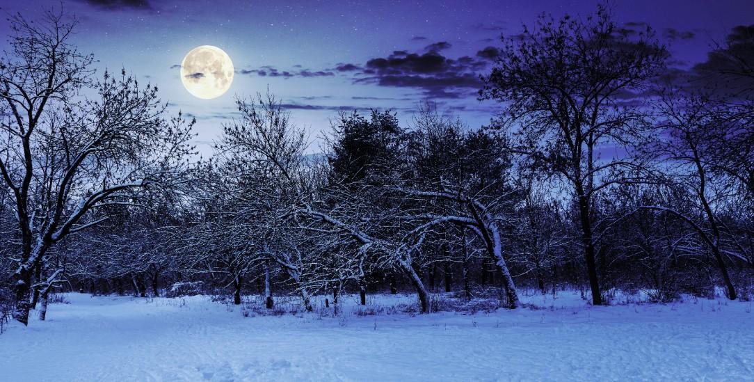 Vollmondnacht im Dezember: Die Zeit »zwischen den Jahren« ist eine besondere (Foto: istockphoto/Mike_Pellinni)