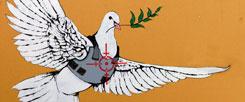 Bedrohte Friedenstaube: Die Welt brennt und so manches Herz schreit nach Waffen (Foto: pa/epa/Hollander modifiziert)