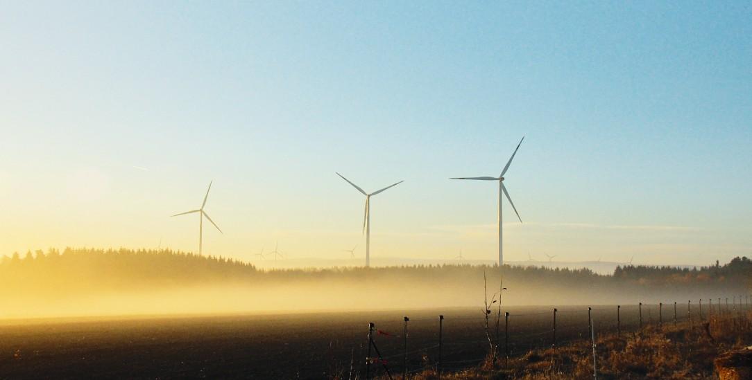 Windräder im Rhein-Hunsrück-Kreis leisten ein Beitrag zur Energiewende, sind aber bei den Anwohnern umstritten. (Foto: Lutze)