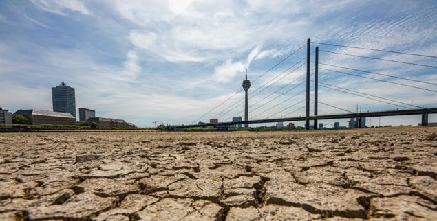 Heiße Jahre:Lang anhaltende Dürre legt das linke Rheinufer bei Düsseldorf trocken (Foto: PA/Jochen Tack)