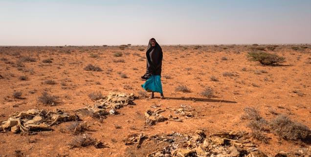 Somalia: Bürgerkrieg und Dürre machen Getreideanbau und Viehzucht unmöglich (Foto: pa/Anna Mayumi Kerber)