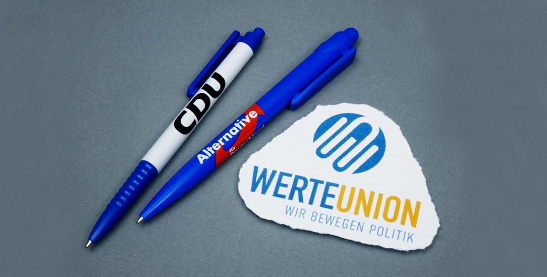 CDU: Wie hält sie's mit der Werte-Union?(Foto: pa/Steinach)