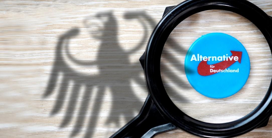 AfD bald unter verschärfter Beobachtung? (Foto: PA/blickwinkel/McPHOTO/C. Ohde)