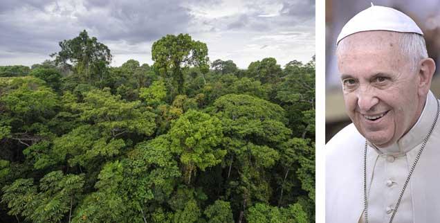 Amazonas-Regenwald von oben, geliebt von Papst Franziskus (rechts): Am 18. Juni 2015 stellte der Mann aus Lateinamerika, der jetzt im Vatikan wohnt und regiert, seine Umwelt-Enzyklika vor. Es ist die erste Enzyklika in der Geschichte der katholischen Kirche, die sich radikal der ökologischen Frage annimmt. (Fotos: pa/Spaziani; istockphoto/salparadis)